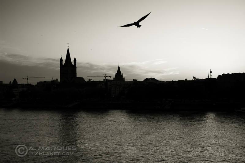Cologne at Dusk